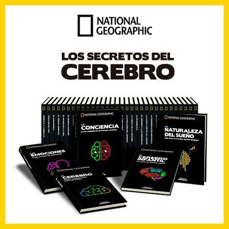 CEREBRO NG 2019 Nº 029