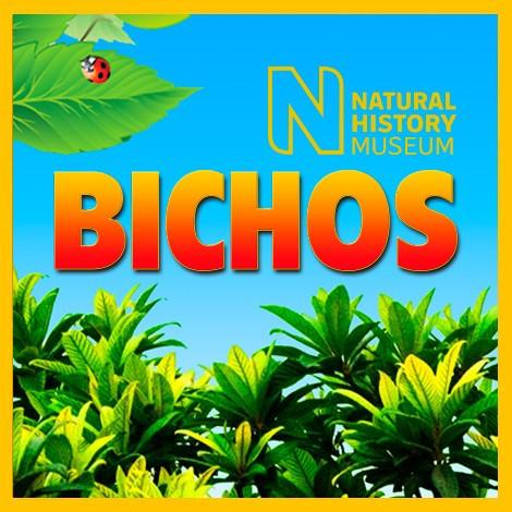 BICHOS 2020 Nº 008