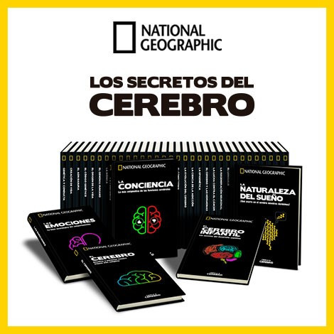 CEREBRO NG 2020 Nº 028